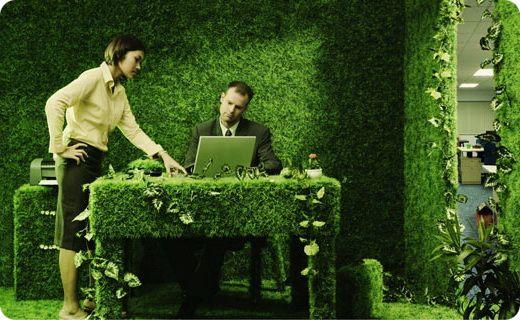 """трудно ли быть эко: работа в """"зелёном"""" формате"""